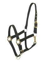 HORSE & WESTERN GATSBY NYLON HALTER HEADSTALL BLACK PONY