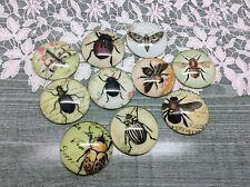 Escarabajo Bee Fly Hecho a Mano 10 X Cúpula Cabujones 25 mm fabricación de joyas álbum de recortes