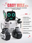 Kids Robot Toy- Dancing, Talking Remote Control Robot Butler (Gray)