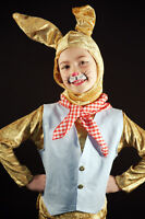 World Book Day-Brer-Peter Rabbit-March Hare-Stage Show-Fancy Dress Costume Set