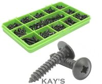 BLACK FLANGED POZI PAN SELF TAPPING SCREWS 4g 6g 8g 10g ASSORTED 340 PIECE KIT