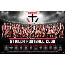 AFL - 2016 Team Posters St Kilda POSTER 61x91cm NEW * Footy