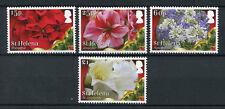 St Helena 2017 MNH Christmas Poinsettia Amaryllis Lily 4v Set Flowers Stamps