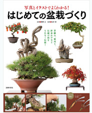 Creating the first bonsai Japanese book