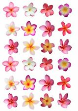 24 Frangipani Flowers EDIBLE WAFER RICE PAPER Cupcake Cake Toppers PRINTED IMAGE