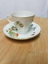 Royal Crown Spring Time Demitasse Cup and Saucer