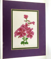 Martha Washington Geranium Print Signed Ltd Edition 466/1000 Margaret Naslund