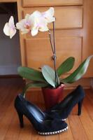 STUART WEITZMAN women's black suede stud pumps size 8.5M(TACO500)