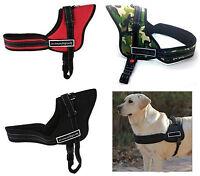 Pettorina per cane Sport Dog con Maniglia tipo Julius-K9