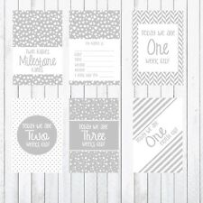 Baby Milestone Cards, 4x6 Photo Prop, Twins Cards 27 cards, Grey and White,