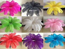 Wholesale!Beautiful 10/50/100pcs Ostrich Feathers 6-24inches/15-60cm wedding