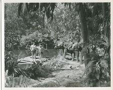 Johnny Weissmuller Johnny Sheffield en Balsa con Elefantes Watching Tarzán Foto