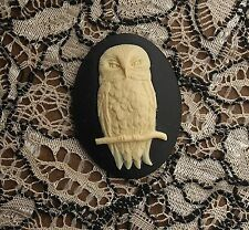 ~Vintage Cameo~Hoot Owl Button~30X40mm Acrylic~Cream over Black~>^..^< Rescue