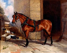 Oil painting Robert Nightingale - Big Red horse in landscape no framed canvas