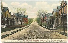 Fair View Avenue, Springdale, Butler PA Postcard 1907