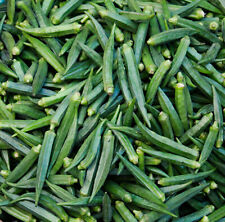 100+ Okra seeds - Super healthy - Green Emerald better than Clemson Spineless