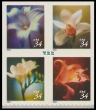 2001 Four Flowers 34c 3487-90 3490 3490a Block of 8 Double-Sided MNH - Buy Now
