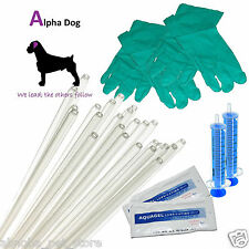 """10 - 8"""" Tubes Dog Standard Rods AI Kit Canine Artificial Insemination Breeding"""