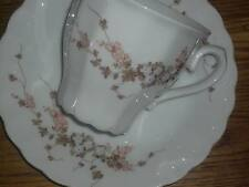1 Kaffeetasse + Untertasse  Eschenbach TOLEDO