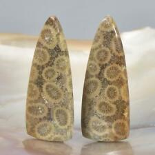 Natural Agatized Fossil Coral Cabochon Pair for Earrings Indonesia 6.00 g