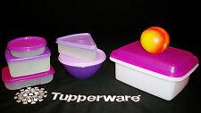Tupperware 12pc PURPLE Lunch Box Things ~Pak N Carry ~Sandwich Salad Pie Snack