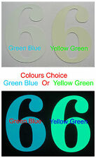6cm Height * Matte Glow * Number or Letter, * Colours Choice Green or Blue *