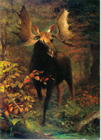 """high quality oil painting handpainted on canvas """"In the forest  """""""