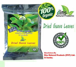 Dried Guava Leaves Fresh Green Antidiabetic Anti Hair Loss Tea 50 pcs