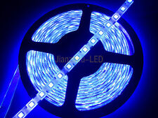 50M 5050 SMD Ultra Violet 60LED/M UV Purple LED Strip Light Waterproof IP65 12V