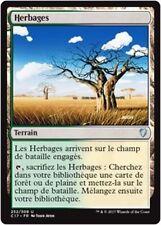 MTG Magic C17 - Grasslands/Herbages, French/VF
