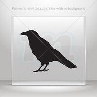 Decal Sticker Crow Figure Atv Bike Garage bike polymeric vinyl st5 X5543