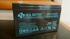 HR1234W Rechargeable Battery. 12 volt alarm backup