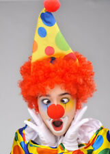Kids Bright Clown Hat and Wig