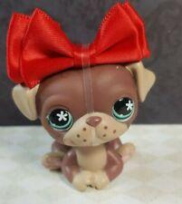 Littlest Pet Shop Hund #889 Mops Pug Figur LPS