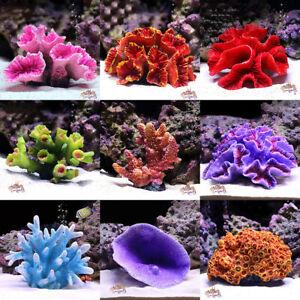 Artificial Resin Coral Reef Aquarium Ornaments Landscaping Fish Tank Decor Home