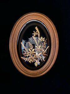 """Vtg Fern & Orchid Wall Picture 24k Gold Plated Floral Hawaii Plaque MCM Tag 8"""""""
