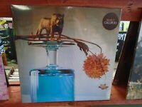 BEIRUT Gallipoli LP NEW GREEN Colored vinyl 5th Album Gypsy Indie Rock Baroque