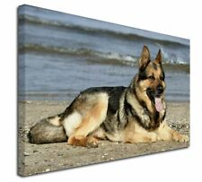 More details for german shepherd dog on beach x-large 30