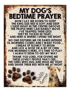 My Dog's Bedtime Prayer Welsh Terrier, Theme Tin metal sign, Novelty Gift,