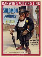 Circus, Clowns, Posters, Oddities, Vintage reprint Quality 8.50 x 11 photo 006B
