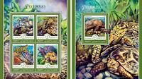 Djibouti Turtles Animals Fauna MNH stamp set