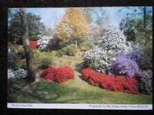 POSTCARD B56-1 BERKSHIRE WINDSOR GREAT PARK - FULL OF FLOWERS