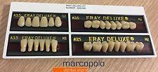 Denti resina artificiali 3 strati Eray Deluxe Vita shade dental false teeth