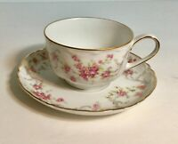 Hutschenreuther Selb Bavaria Germany Tea Cup and Saucer Set Dainty Roses