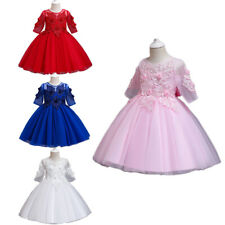 Flower Kids Mesh Sleeve Lace Embroidery Girls Dress Pageant Birthday Party Gown