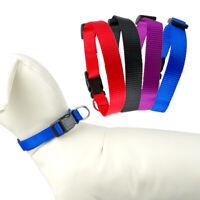 10pcs/lot Nylon Small Dog Collars D-ring for Pet Puppy Cat Red Blue Black Purple