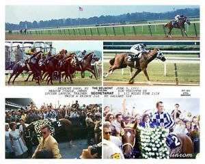 Secretariat 40th Anniversary 1973-2013 Belmont Stakes Triple Crown 10 x 8 Photo
