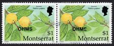 Montserrat: Caribbean Fruits (OHMS); horizontal pair of $1 (Guava); fine used