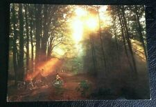 POSTCARD; ELVEDEN FOREST, CENTERPARCS; USED; POSTED; POST DATE ON CARD 1999