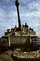 WW2 Photo Picture Crew of German Panzer Tiger I Or the King Tiger tank 318